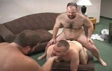 Three horny bears get wild and naughty